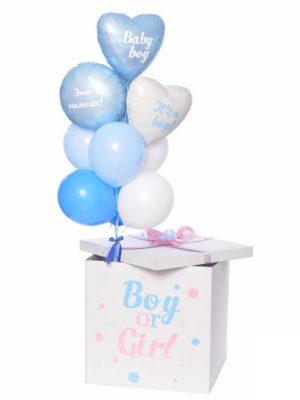 Коробка с шарами «Определение пола ребёнка»