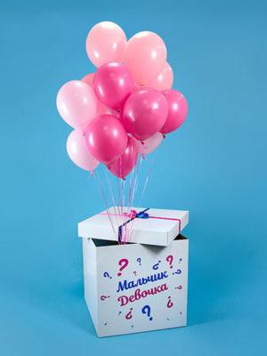 Коробка с шарами «Пол ребёнка»